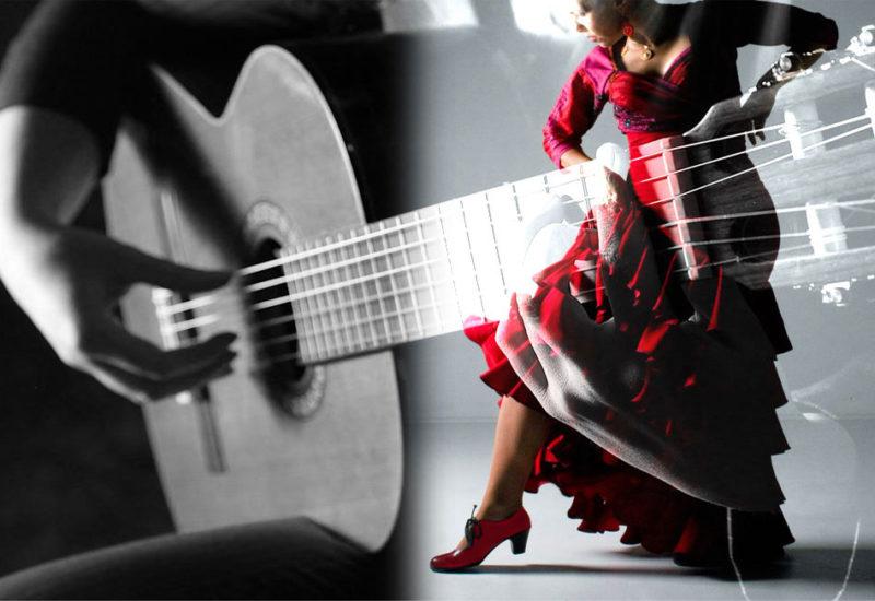 flamenco-c